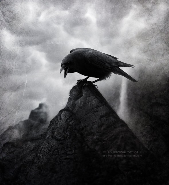 Crows Ravens Mystery Of The Iniquity