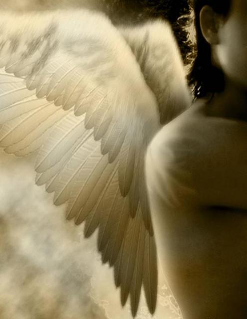 Angel_0