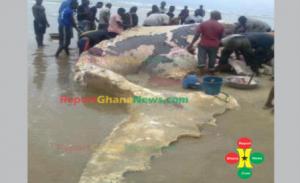 nov 22report-ghana-news251-653x400