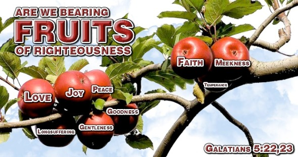 are-we-bearing-fruits-of-righteousness