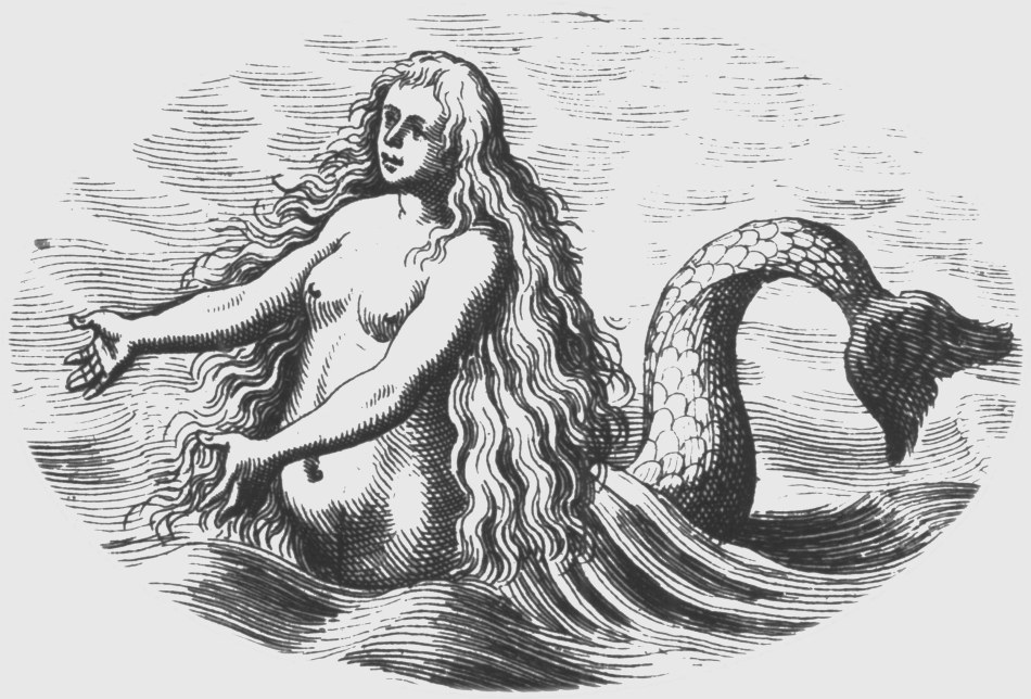 St. Croix Virgin Islands History 18CG Mermaid 29