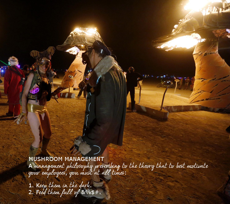 burning_man_2013_023
