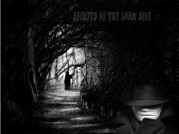 dark-forest-night-image