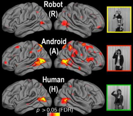 human-android-brains-ucsd