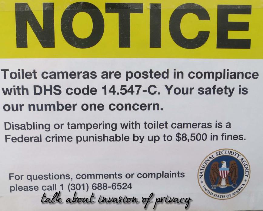 toilet-cameras