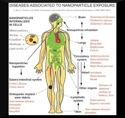 0409ctt-nanotoxicity_lo-res