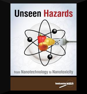 nanotech-report-228x300