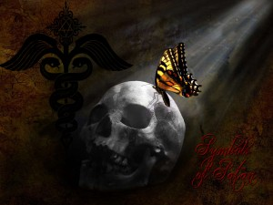 skull-monarch-butterfly
