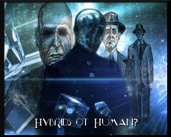 ice-anonymous_00053940