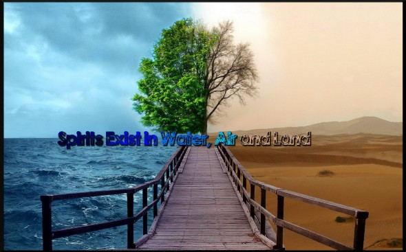 Landscapespringtrees-Lato-Desert-Sea-Sezonowe-Art-1800x2880