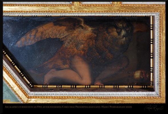 Ascalaphus_turned_into_Owl_andPomegranate_5497