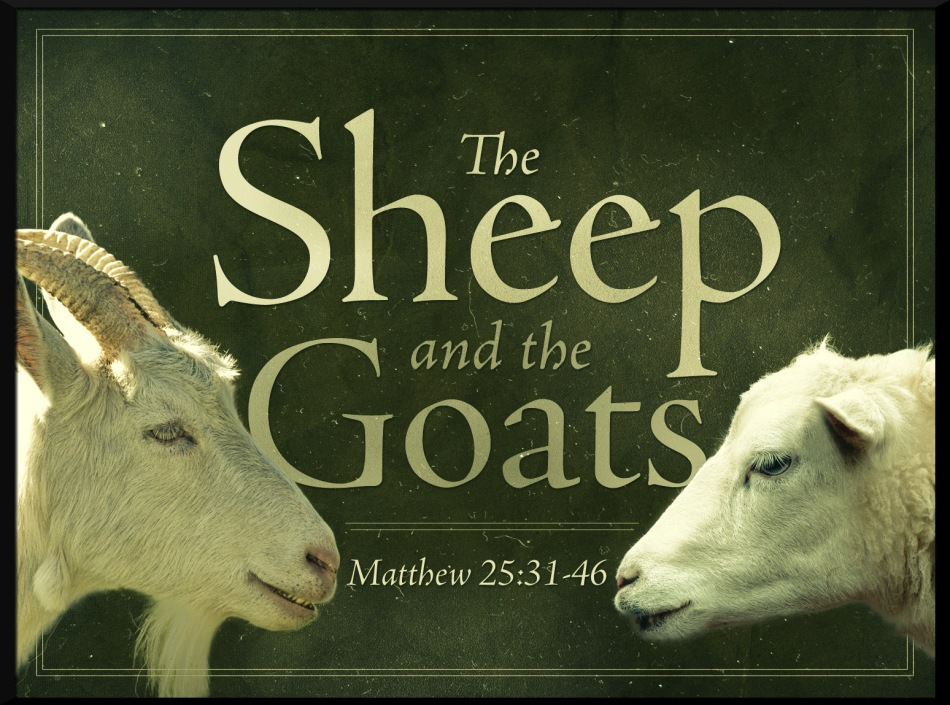 sheep-and-the-goats-the_std_t