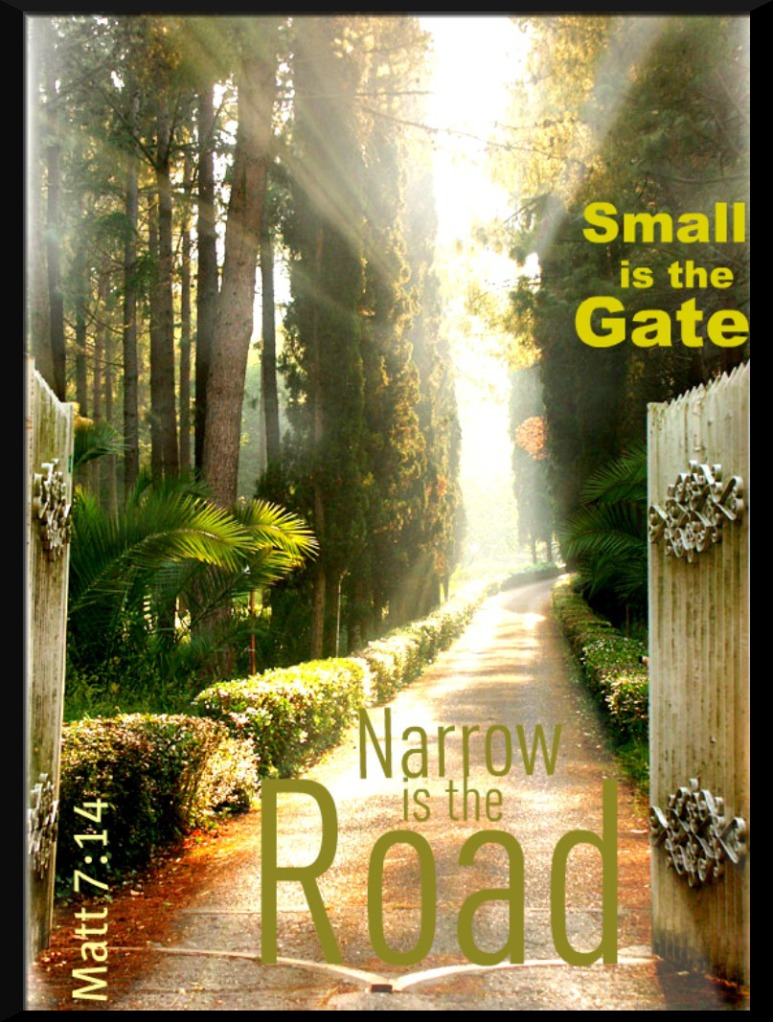 small-gate-narrow-road