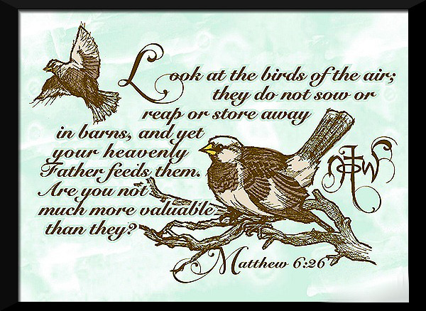 Sparrow Scripture_thumb[11]