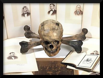 100105_skull_bones