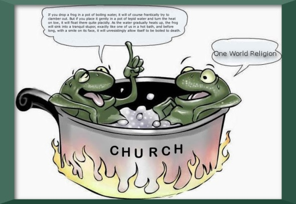 Frogs in a Pot 1