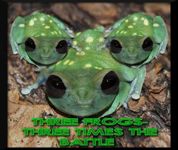 alien-tree-frog-1