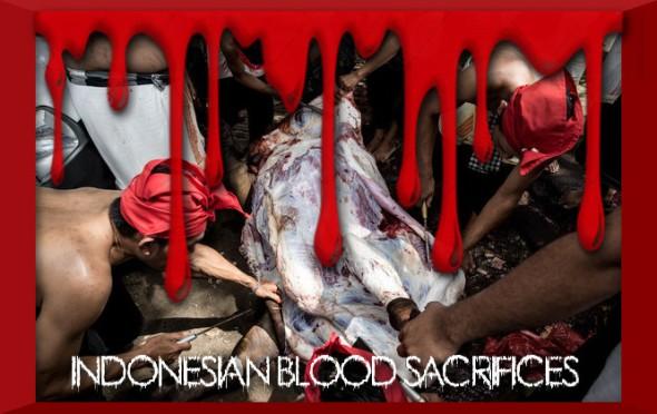 Indonesians+Gather+Ngusaba+Kaula+Blood+Sacrifice+wS4RzkdBTBAl
