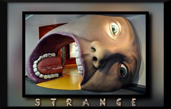 a.aaa-A-strange-house