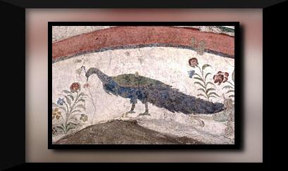 vatican-necropolis-mausoleum-i-03-peacock