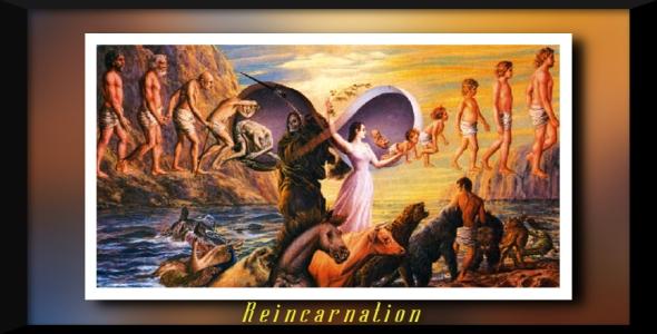 reincarnation-jpg[1]