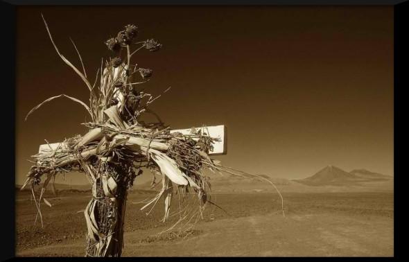 DesertCross2